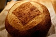 Whole Wheat Casareccio Round